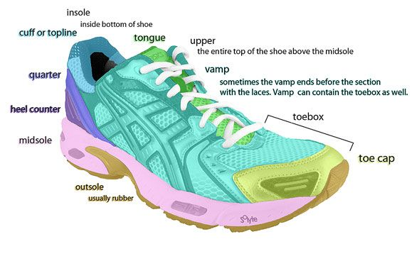 the anatomy of the best shoe for treadmill