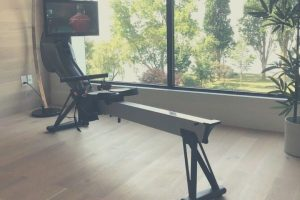 Aviron rower in home with scenic window views